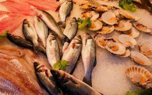 Łosoś, pstrąg i dorada, czyli ryby prosto z grilla
