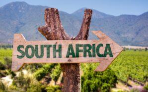 Wina z RPA – kluczowe informacje